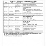 Grade VII Term 1 CCE 2 Schedule-page-001